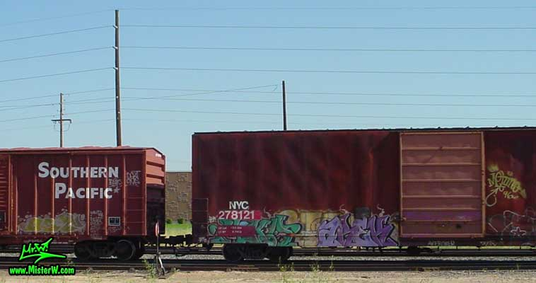 aREK Arek Freight Train Graffiti