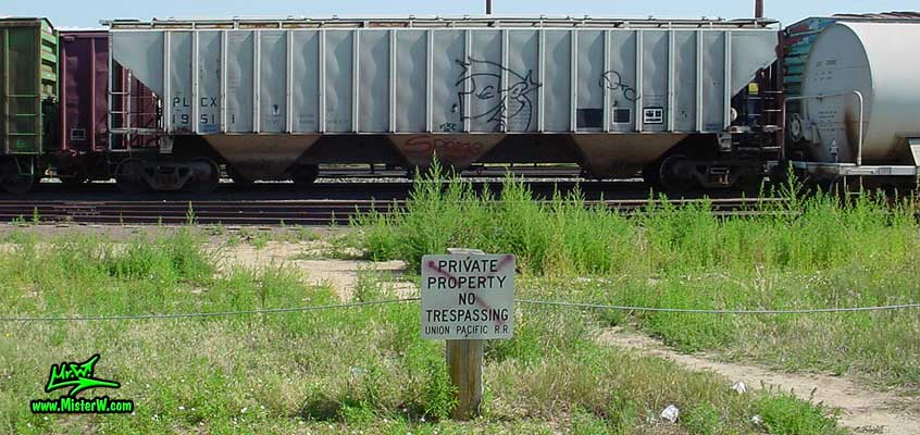 Photo of a Freight Train with Graffiti