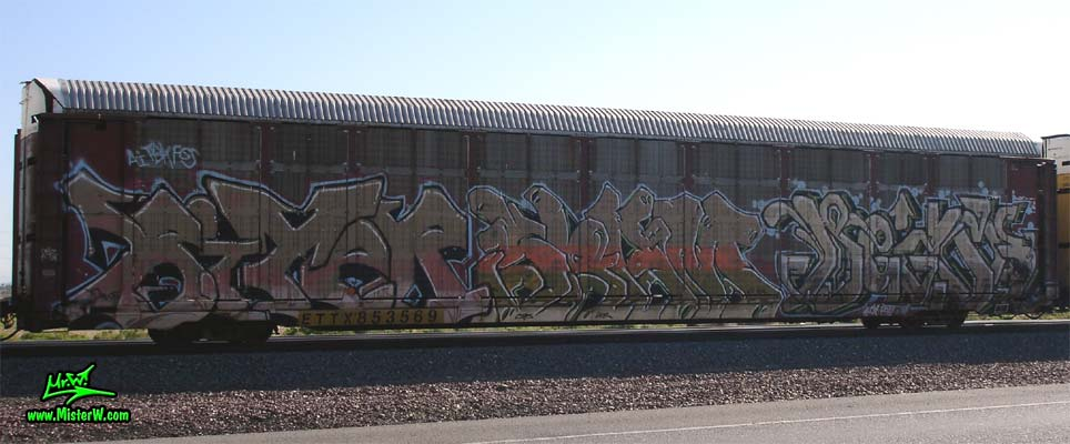 BiTeR Photo of a Tri-Level Car Transporter with Top To Bottom Graffiti
